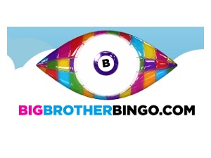Big Brother Bingo